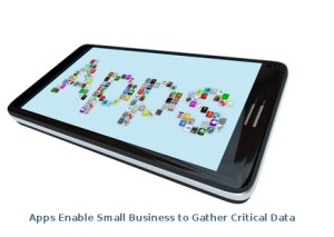Critical Data for Small Businesses