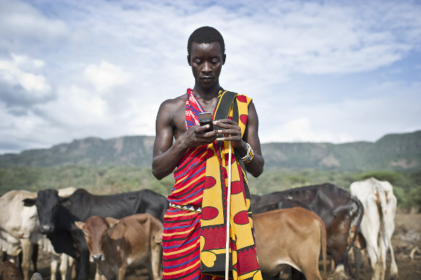 Mobile agriculture apps benefit a Maasai sepherd in Kenya